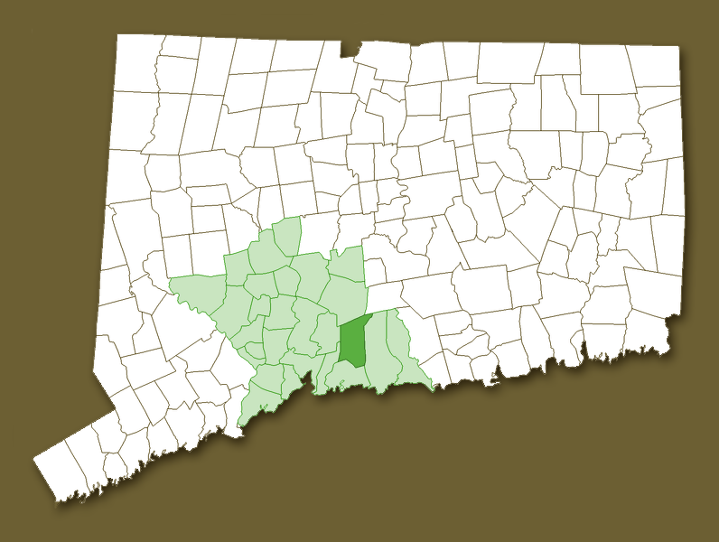 Map of CT with New Haven County and North Branford highlighted