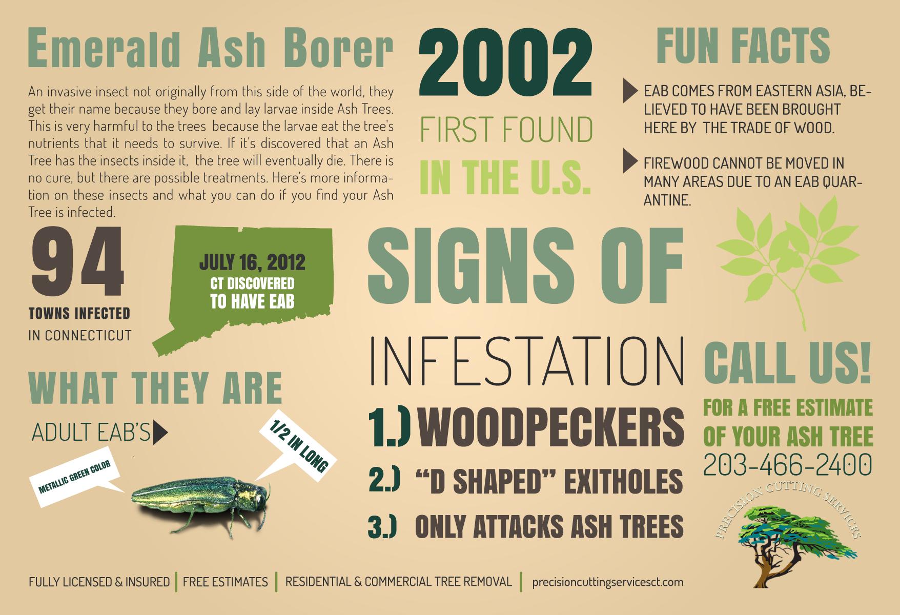 ash-info